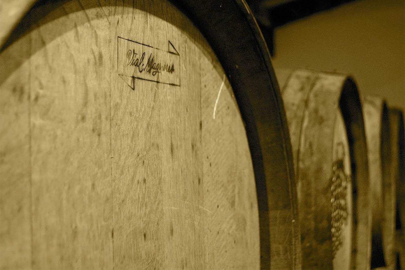 Des vignes à Banyuls sur mer, Cosprons, Port-Vendres